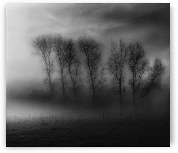 50 Shades of Fog by 1x