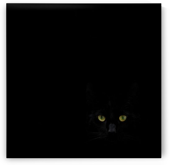 Watching you from the dark side by 1x