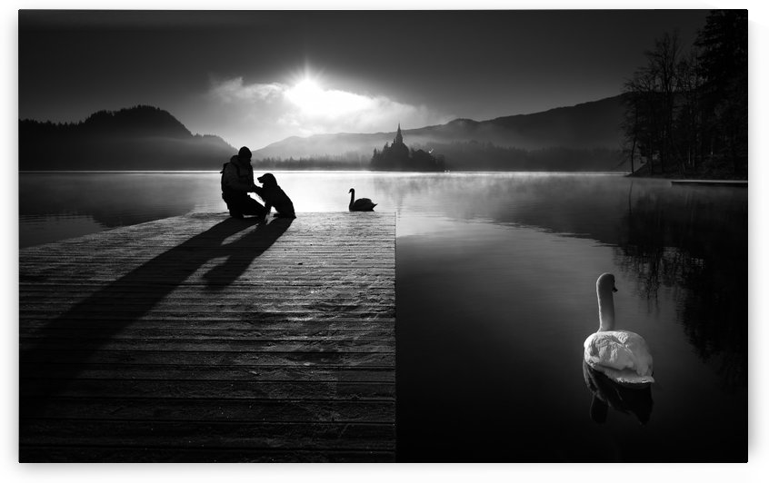 A peaceful morning at the lake by 1x