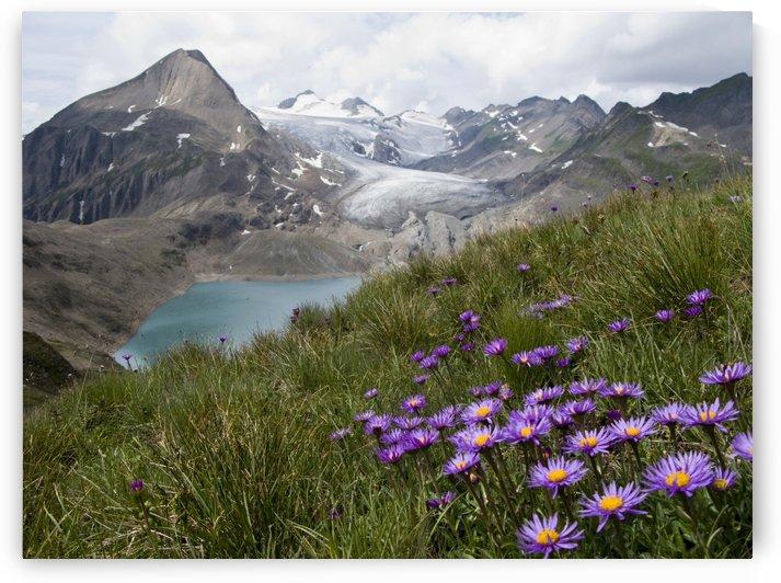 Corno Gries, Switzerland by 1x