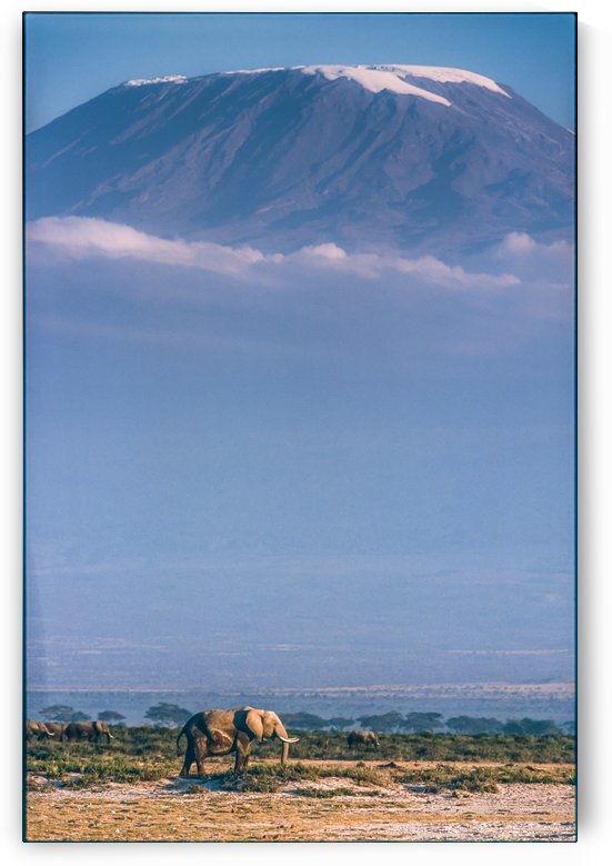 Kilimanjaro and the quiet sentinels by 1x