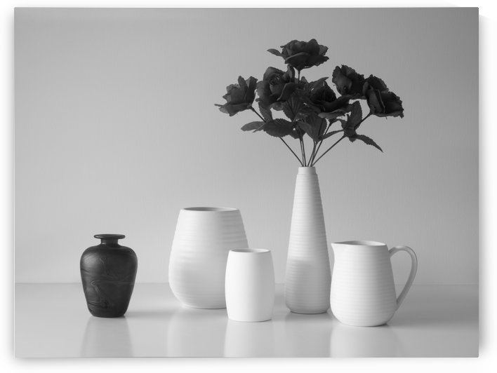 Still Life in Black and White by 1x