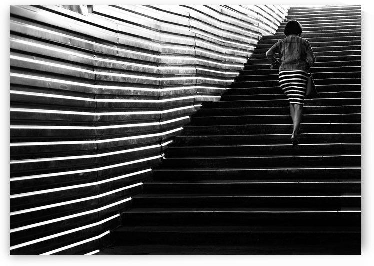 stripes by 1x