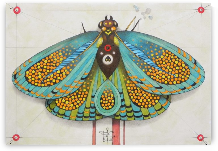 psychedelic butterfly by federicocortese