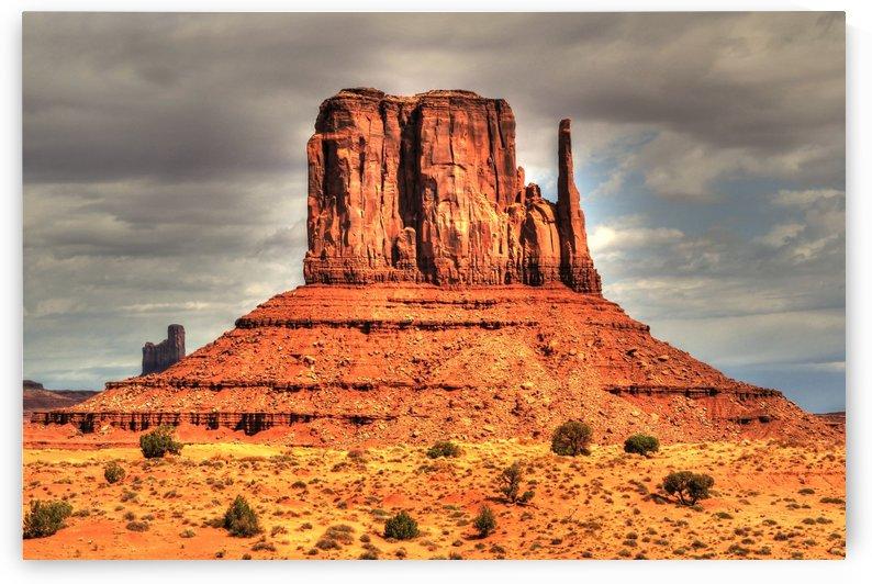 west mitten at monument valley  by tom Prendergast
