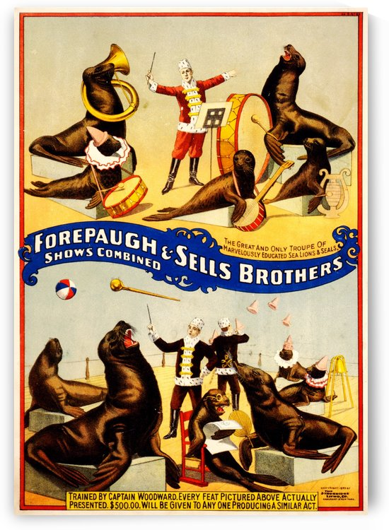 Forepaugh Sells Brothers 1899 by VINTAGE POSTER
