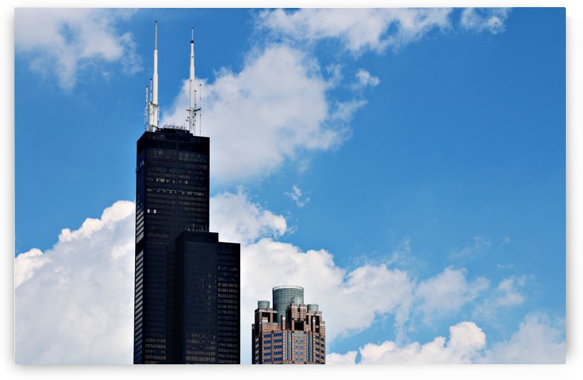 Willis Tower by Don  Baker