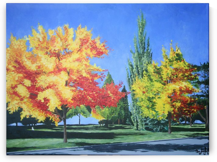 College Trees by Cameron Jared Langhofer