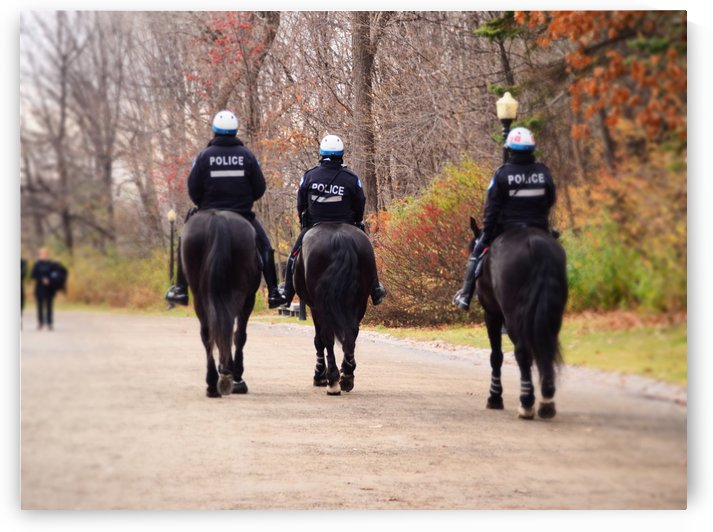 Police! by GSPhoto