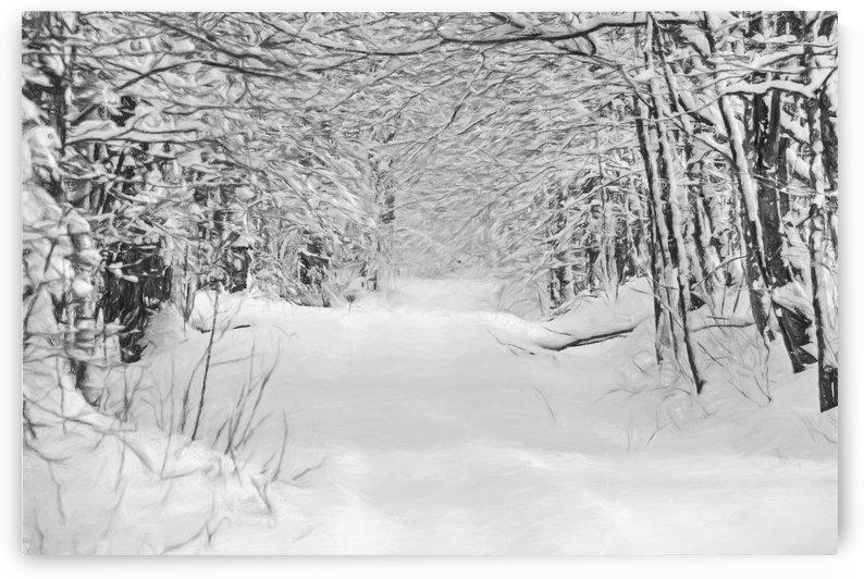 sentier de neige by dbriyul