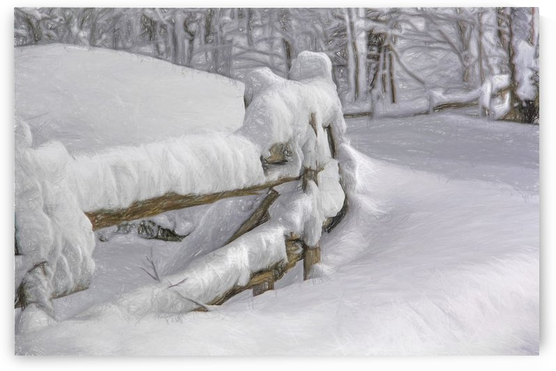 snow fence by dbriyul