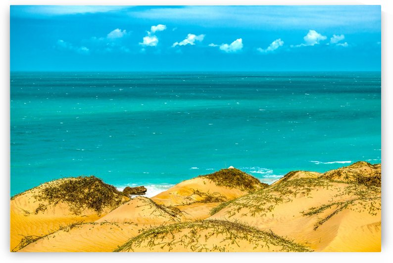 Dunes and Ocean Jericoacoara Brazil003 by Daniel Ferreia Leites Ciccarino