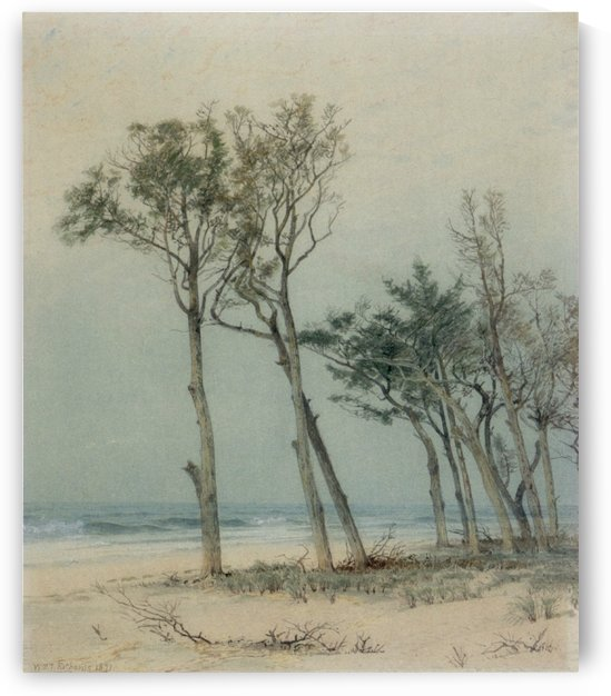 Trees on the Jersey Shore by William Trost Richards