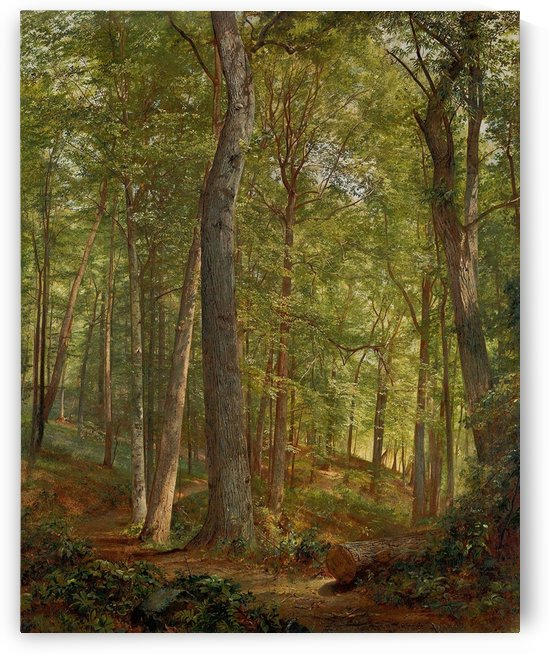 June Woods by William Trost Richards