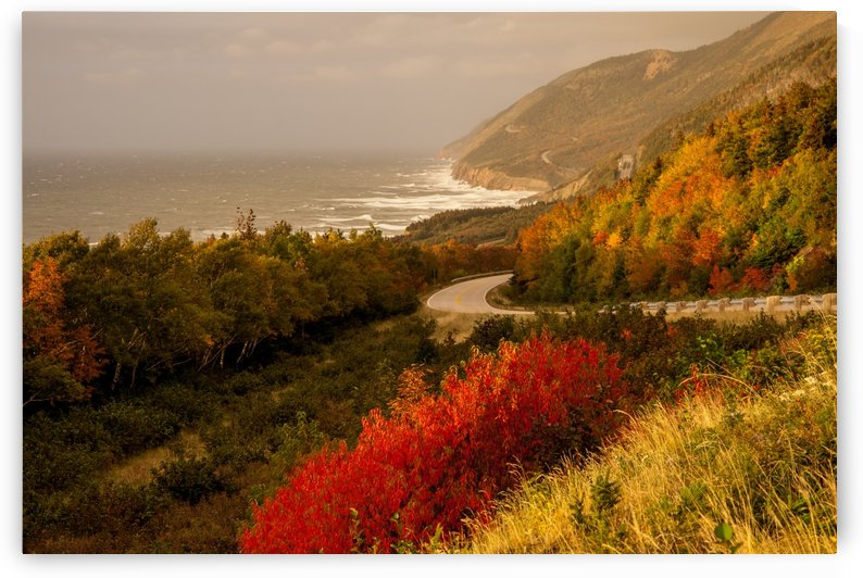 Autumn on the Cabot Trail by Michel Soucy
