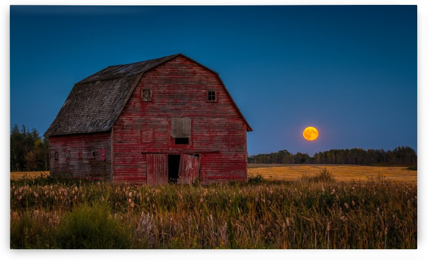 Harvest Moon by DLPSquared