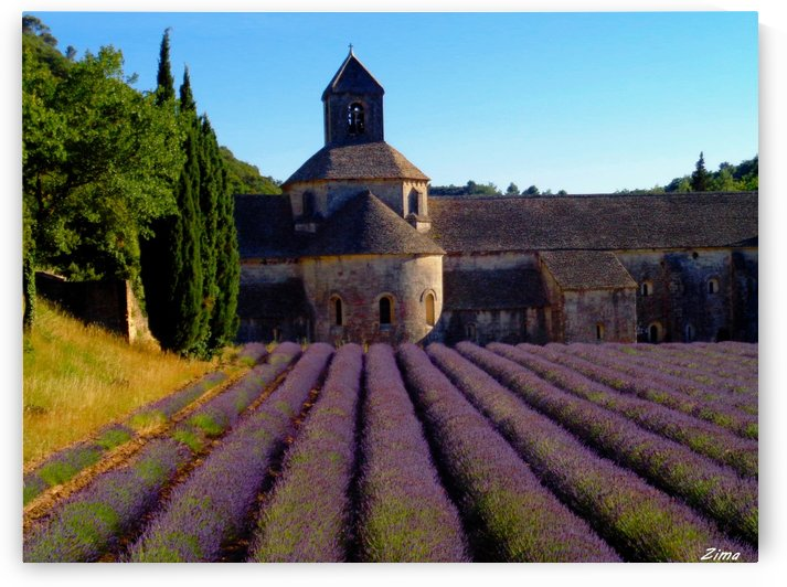 Lavendar Field at Senanque Abbey by Karen zima