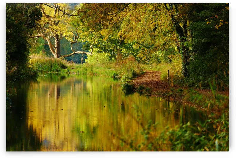 Autumn canal by Andy Jamieson