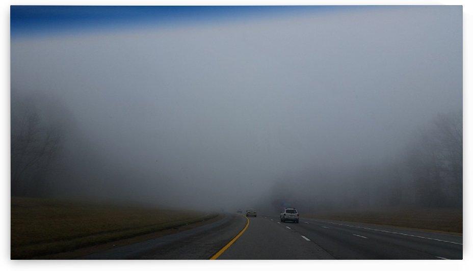 Misty Fog by M-S-B