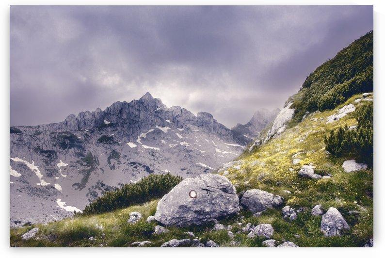 Magic mountain by Marko Radovanovic
