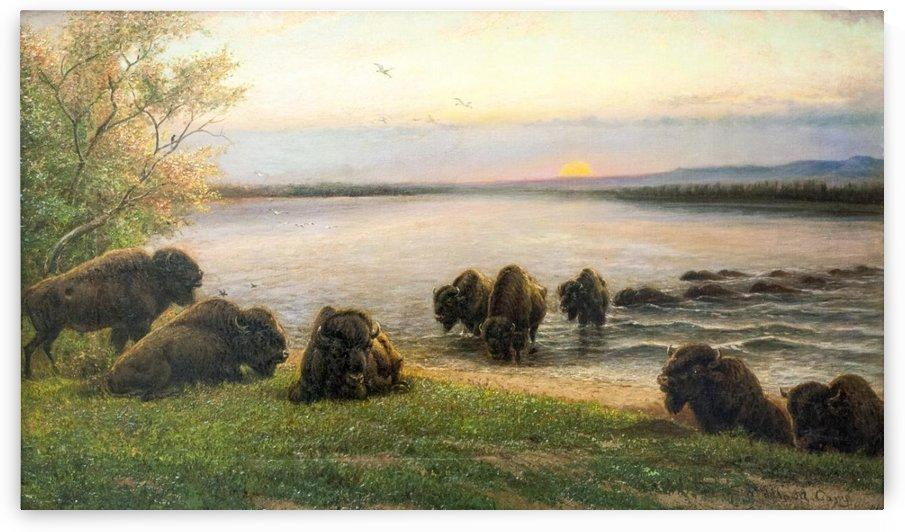 Buffalos resting near the lake by William de la Montagne Cary
