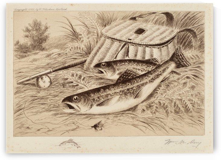 A Good Catch by William de la Montagne Cary