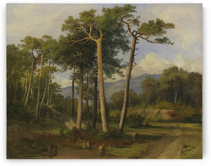 A forest landscape by Alexandre Calame