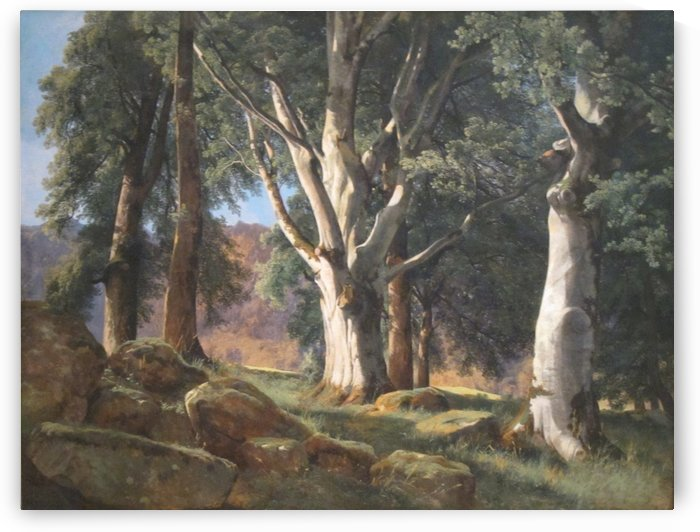 The Sycamores by Alexandre Calame