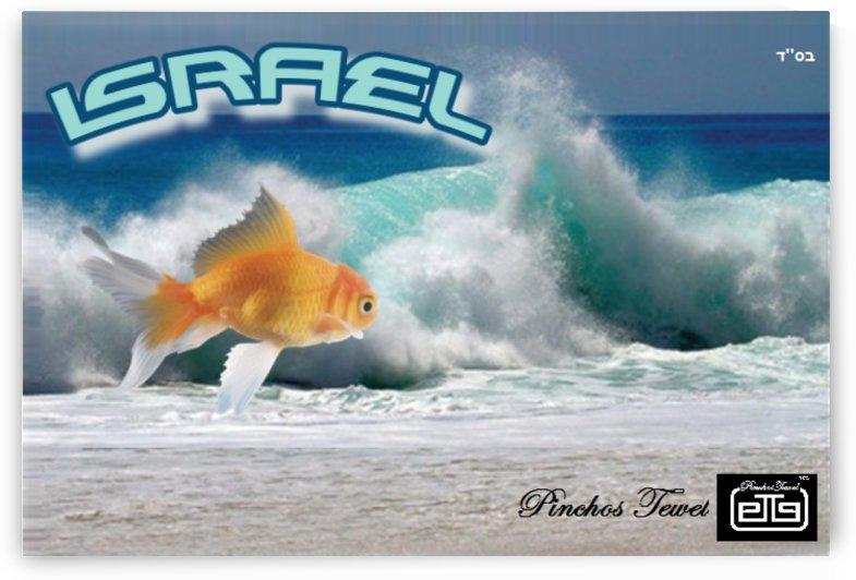 art israel ocean  2 by pinchos tewel