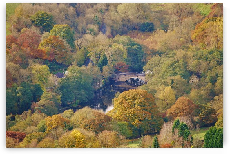 Autumnal bridge by Andy Jamieson