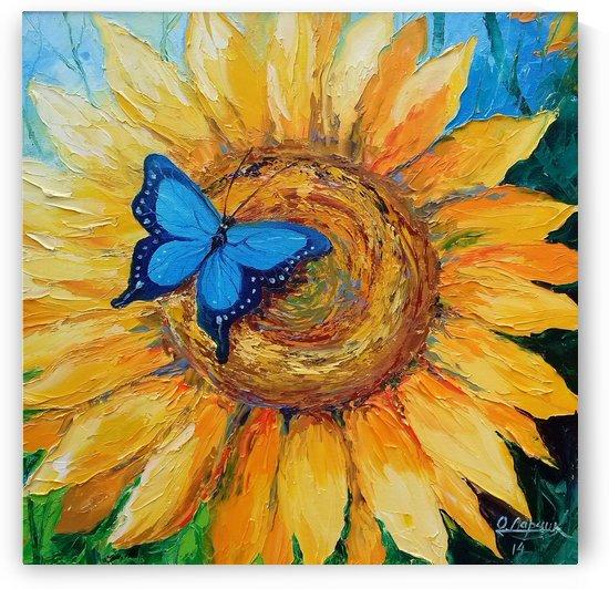 Подсолнух и бабочка by Olha Darchuk