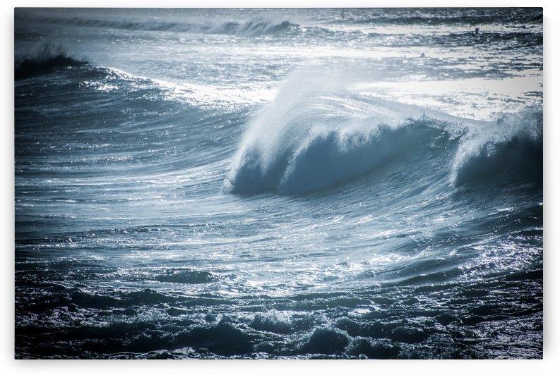 Wave by Andrea Spallanzani