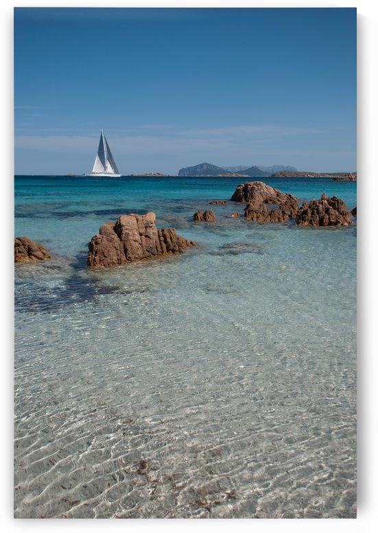 Mediterranean by Andrea Spallanzani