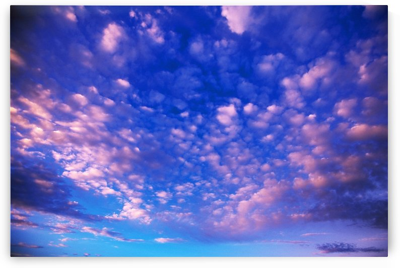 Cirrus Clouds by PacificStock