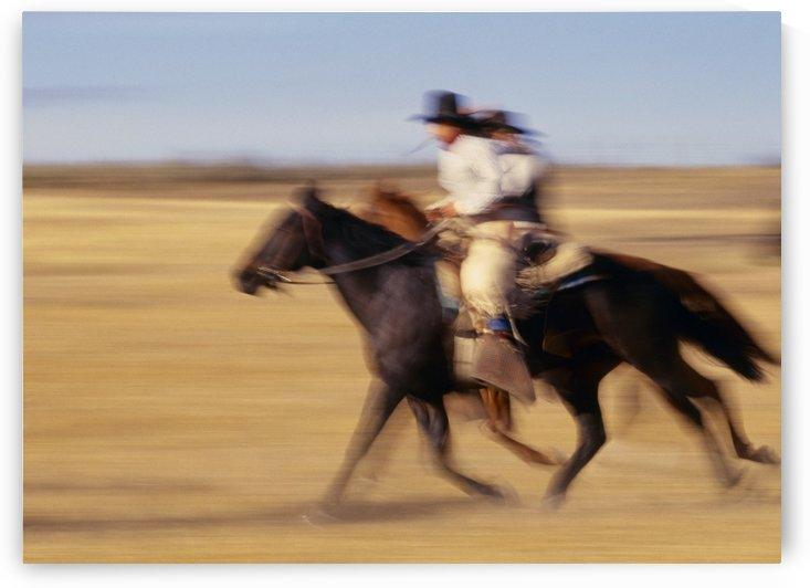 Cowboys Racing Horses by PacificStock
