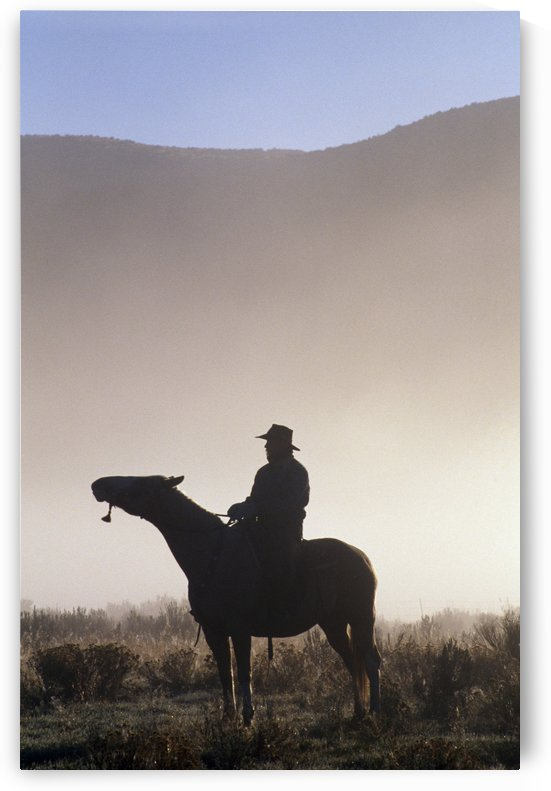 Silhouetted Cowboy On Horseback In Fog by PacificStock