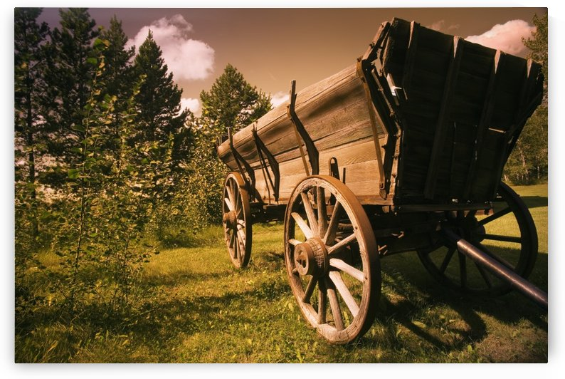 Old Wagon by PacificStock