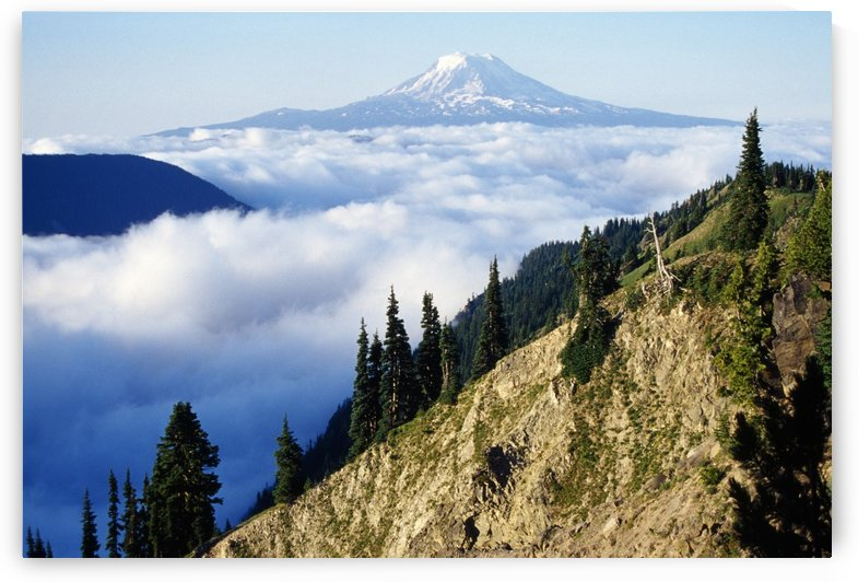 Mount Adams Above Cloud-Filled Valley, Washington, United States Of America by PacificStock