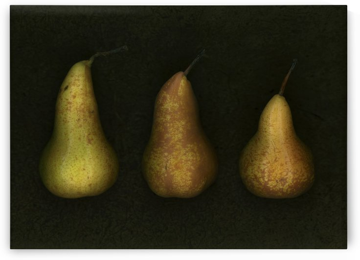 Three Golden Pears by PacificStock