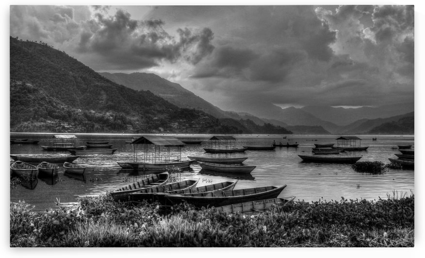Monochrome Madness - Fewa Lake by Roshan Raj