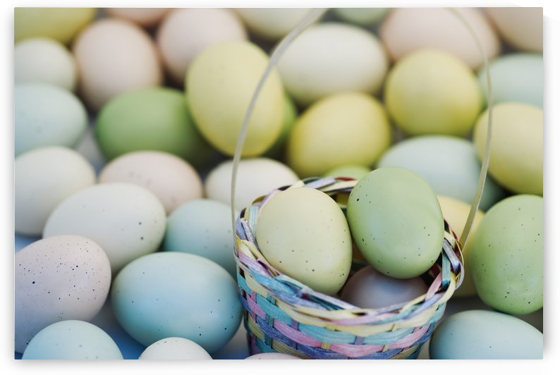 Easter Eggs And Basket by PacificStock
