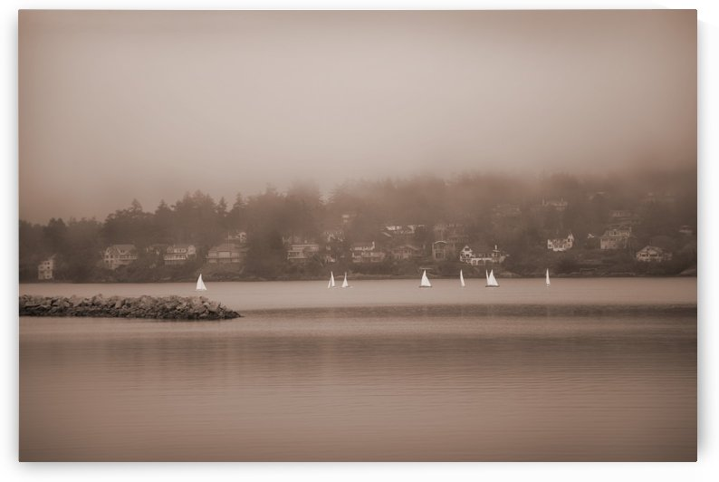 Sailboats In Victoria, British Columbia by PacificStock