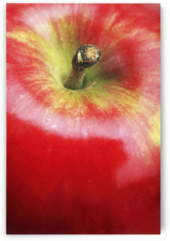Closeup Of An Apple by PacificStock