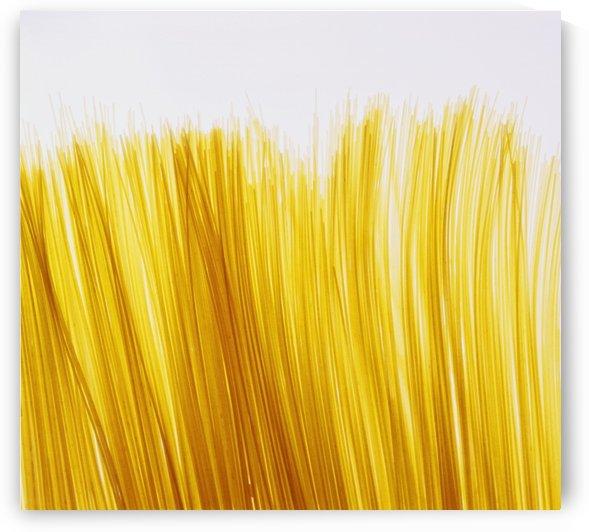 Spaghetti by PacificStock