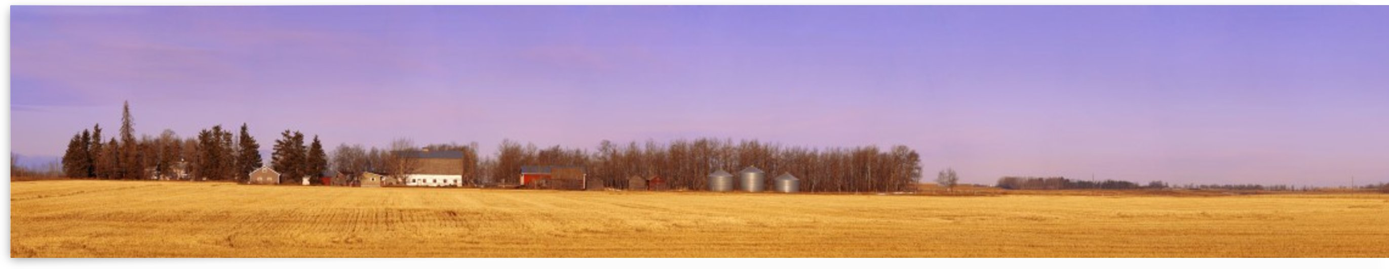 Farm Scene North Of Calgary, Alberta by PacificStock