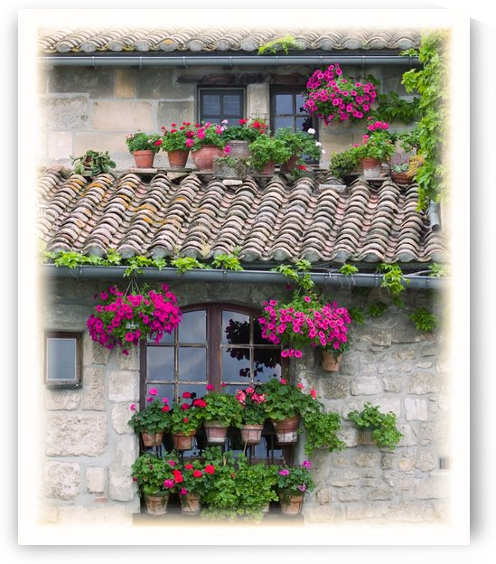Flower Pots In Windows In Arles, Provence, France by PacificStock