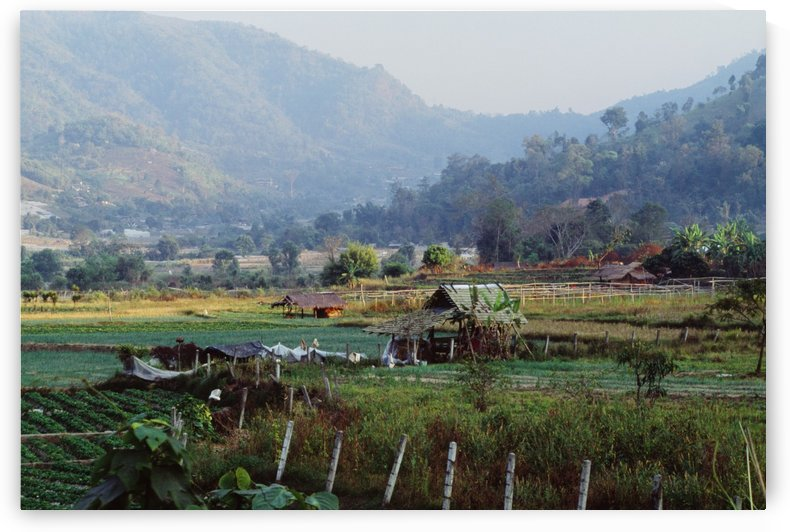 Rural Scene Near Chiang Mai, Thailand by PacificStock