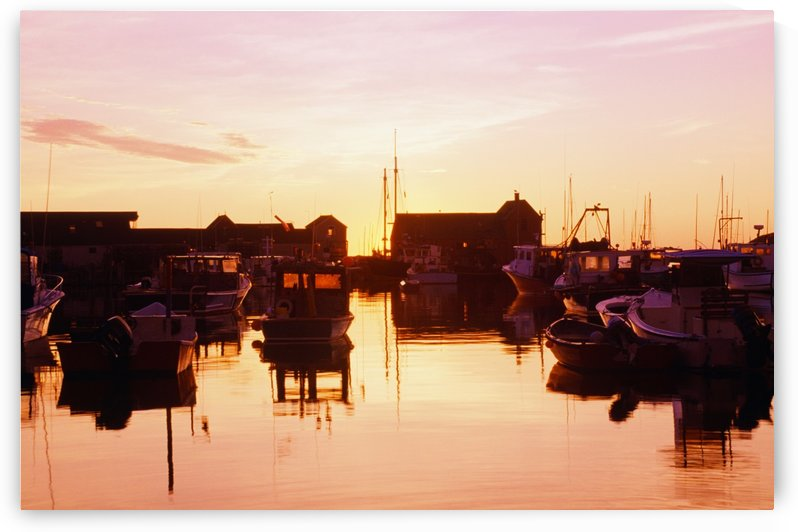 Harbor At Sunrise by PacificStock