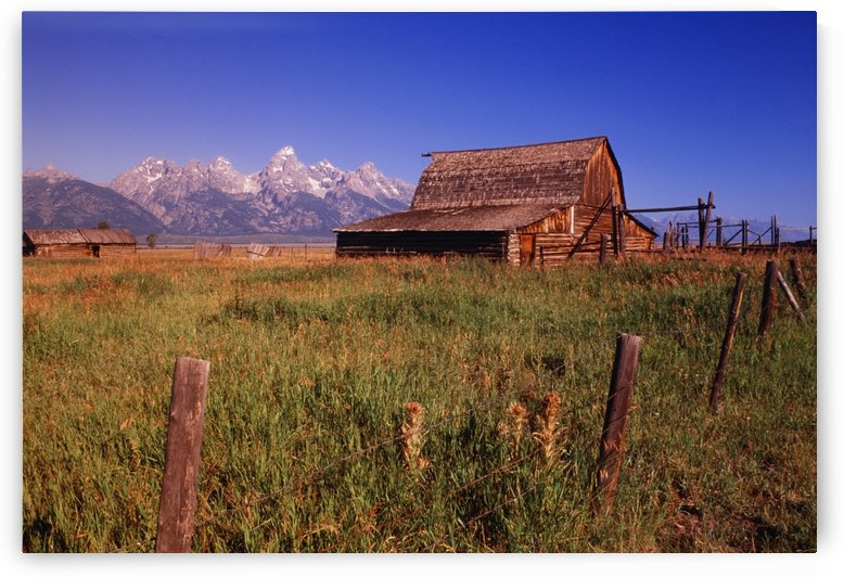 Old Barn, Grand Teton National Park, Wyoming, Usa by PacificStock