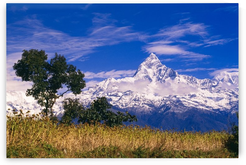 View Of Machhapuchhare From Sarangkot, Annapurna Region, Nepal by PacificStock